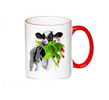 Two Toned Mug